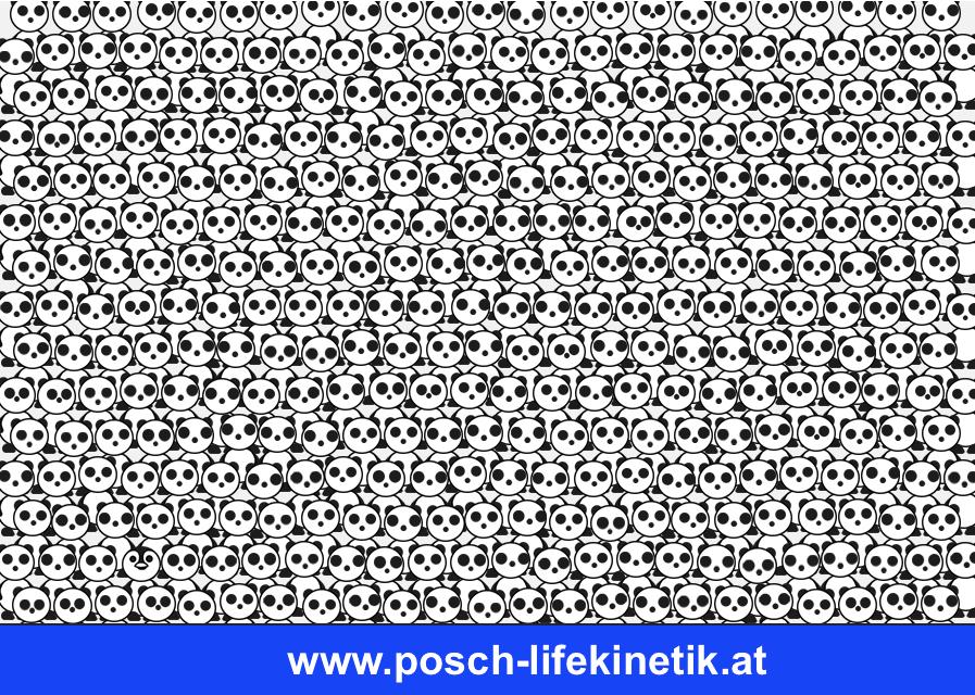 Life Kinetik Jürgen Posch